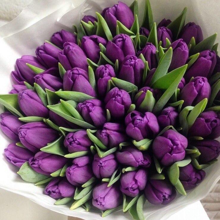 Букет сиреневых тюльпанов фото